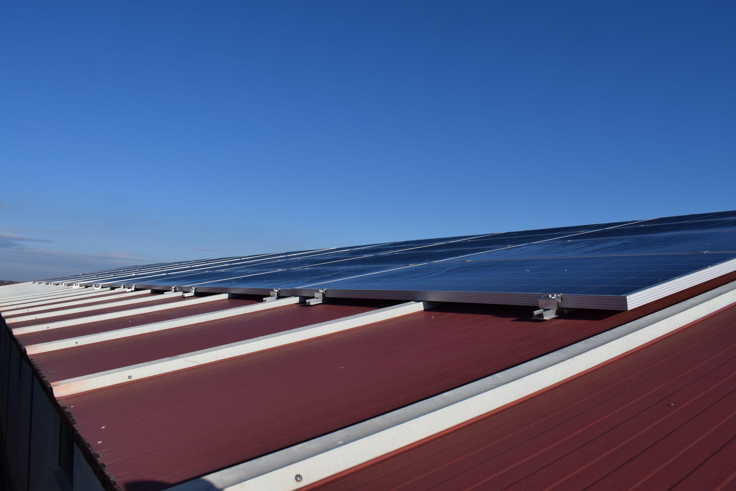Placas fotovoltaicas granja