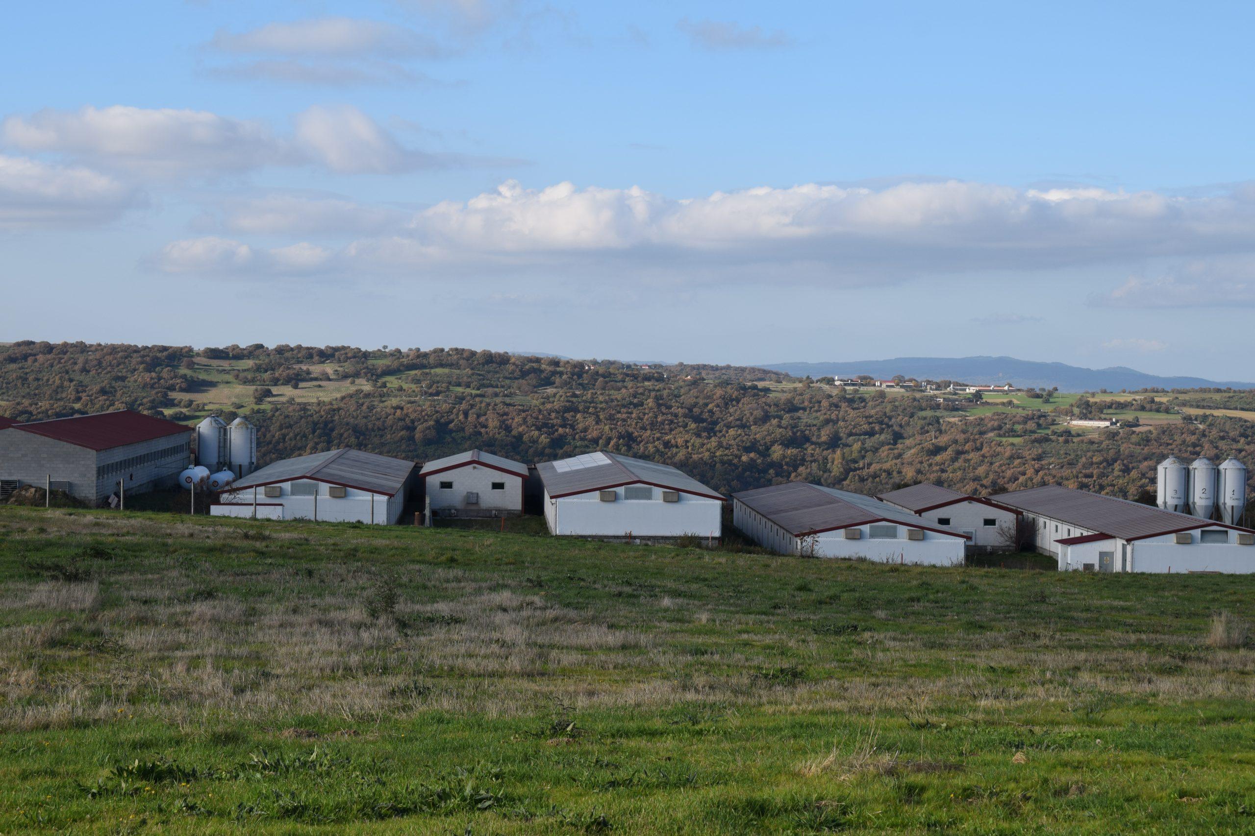 granjas en galicia