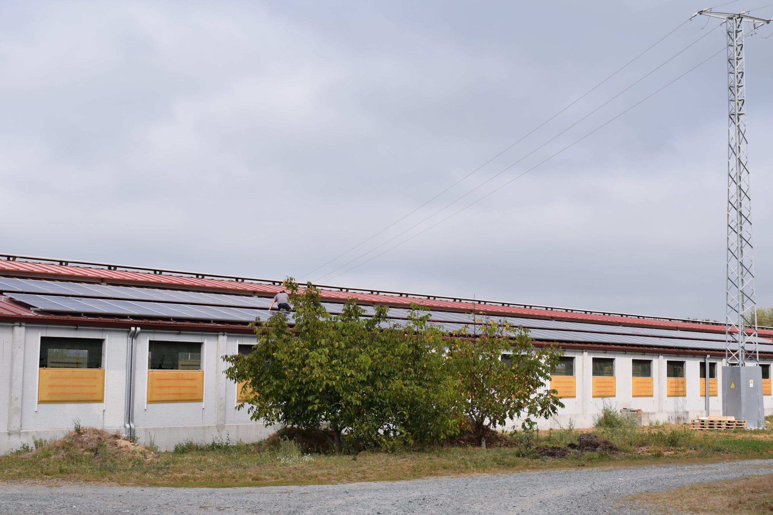 fotovoltaica en granja de galicia