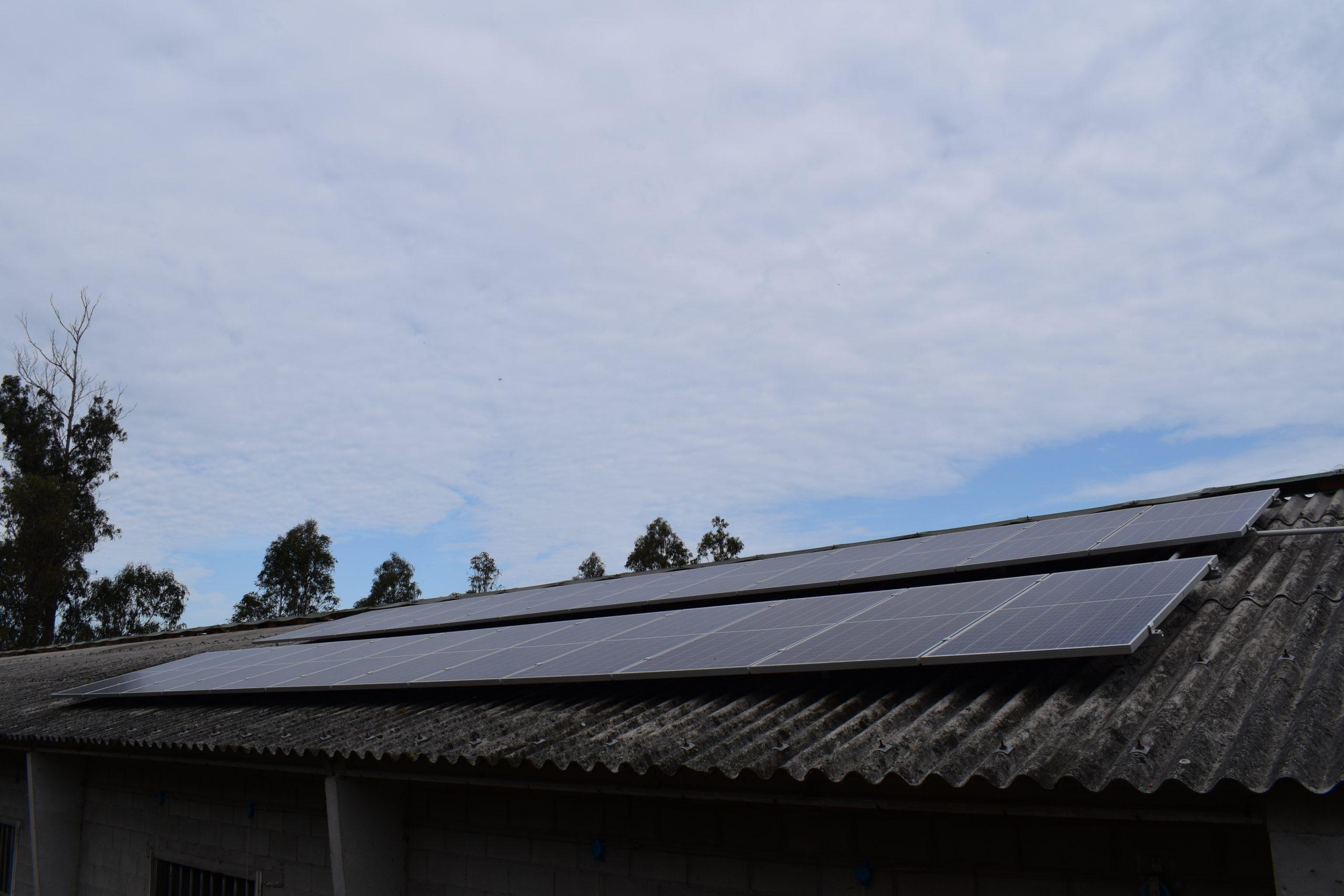 Placas fotovoltaicas en granja de galicia